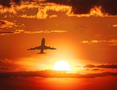 Çevrim Uçuşu